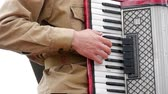 accordionist : Musician playing the accordion. Hand playing accordions closeup. Accordion player.