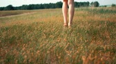 csupasz : Womans feet walking over green grass field.