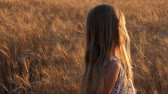 sylwetka : Young girl in a golden field during sunset.