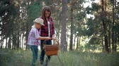 грибы : Mom and little daughter go on the road in the autumn forest. The family gather mushrooms and berries in the forest on a sunny day. Mother and daughter walking in the woods. Spending time outdoors.