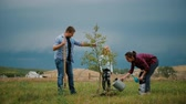 quatro pessoas : Family of four planting a new tree in his garden. The concept is to plant trees, a friendly family.