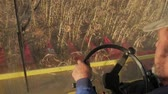 подсолнечник : Man driving a combine and harvesting the sunflower.