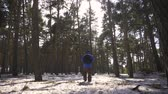 nordicwalking : Hiker with backpack walking in the pine forest covered with deep snow. Winter activity and recreation concept. Stock Footage