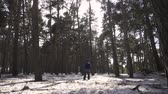 mochila : A man is a tourist in a pine forest with a backpack. A young traveler in a hike in the winter. Winter sport activity. Man hiking in the forest. Archivo de Video