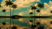 3d animation palm tree on the island, travel, vacation