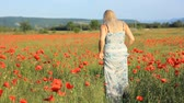 loiro : girl on the summer  red poppy fild Vídeos