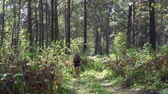 şort : Young blonde woman with a backpack goes along the path in siberian autumn forest. Russia, Siberia, Salair