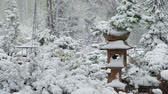 терракота : Bonsai Park in the Novosibirsk botanical garden under the snow in the late spring snowfall. Siberia, Russia
