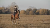 paardrijden : Beautiful woman riding horse at sunrise in field. Cowgirl at brown horse