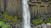meditation : Vegetation and basalt rocks together with falling waters of the Svartifoss, Iceland