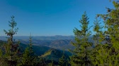 pinha : Flying over the rock and coniferous forest of the Carpathian Mountains. 4K