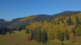 ель : Panorama of mountains and autumn forest. Beautiful nature of the Carpathian Mountains. 4K