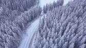 snow covered spruce : Aerial flight over winter forest with road. The car goes on a snowy road. Snowy tree branch in a view of the winter forest. Aerial footage, 4K