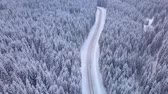 field ice : Aerial view of highway among the forest. Winter landscape,road and snow covered trees. Snowy tree branch in a view of the winter forest. Aerial footage, 4K