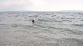 pływak : The little boy is joyfully swimming in the Adriatic Sea. Waves in the sea. Croatia