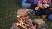 charbroiled : Young people bake sausages on fire. Picnic in the woods Stock Footage