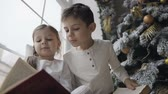 Рождественский подарок : Close up, brother and sister sitting on the window sill of a large window near a christmas tree and reading books. Winter holiday