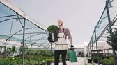 garden center : The young gardener goes greenhouse, holds in the hands of a green pot and funnel. Stabilized camera movement, overall plan.