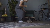 muselière : Little dog with owner spend a day at the home playing and having fun Vidéos Libres De Droits