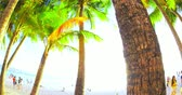flora : Tropical beach background with unidentified tourists and local people relaxing on sea shore. Popular travel destination Stock Footage