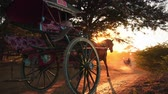 arqueológico : Amazing scene of horse carts on dusty roads of rural Myanmar near Bagan historical site at sunset with bright shining sun and rays. Countryside of Burma