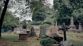 voar : Walking with camera through old graveyard of ancient cemetery. Gothic headstones and grunge graves under garden trees
