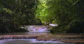 patak : River stream in tropical rainforest jungle nature. Waterfall cascades in Thailand forest beautiful 4K background Stock mozgókép