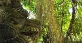 balinese : Mystical forest with jungle plants and ancient Hindu statue of Dragon made of stone. Traveling to Bali, Indonesia
