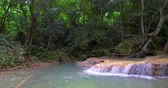 mírumilovný : Tropical rainforest nature background. Stream of water flows through jungle forest