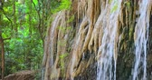 湿気の多い : Moist limestone stalactites in highland jungle in Asia 動画素材