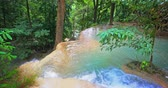 emerald water : Fresh vegetation of tropical forest. Mountain water stream flows in asian jungle Stock Footage