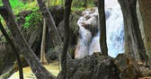 칸차나 부리 : Waterfall behind trees in tropical nature environment 무비클립