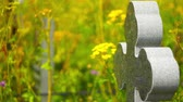 recém nascido : Granite cross churchyard Stock Footage
