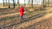 Autumn Park. November. Older woman engaged in Nordic walking
