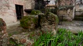 telhados : Tilt up of a beautiful scenery of ruins of a buildinghouse surrounded by greenery