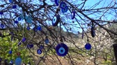 hurafe : Colorful Evil Eye Bead Amulet on Tree Stok Video
