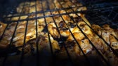 roast poultry : Chicken Food on Barbecue Stock Footage