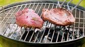 foods : Grilled steak on hot coals