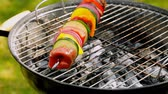płomień : Grilled skewers with vegetables and beef on hot grill Wideo
