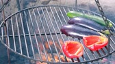 beringela : Grilled vegetables on fireplace with flames Stock Footage