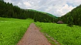 abrigo : Mountain trail in the Tatra Mountains in the Jaworzynka Valley in the summer Vídeos
