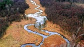 pântano : Small winding river between brown swamps, aerial view Stock Footage