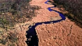 wetland : Blue winding river between brown swamps, aerial view