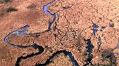pântano : Blue winding river between brown swamps, aerial view, Poland