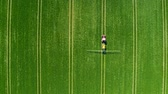 farming equipment : Top view of tractor spraying green field in spring Stock Footage