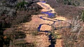 pântano : Winding small blue river, aerial view, Poland Stock Footage