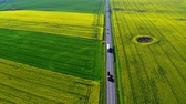 Moving cars on a fast road between rape fields, Poland