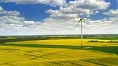 energia : Stunning yellow rape fields and white turbine from above, Poland