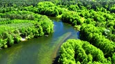 vale : Aerial view of the river winding among the forest, Poland