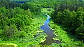 Stunning old green forest and river in Tuchola natural park, aerial view, Poland